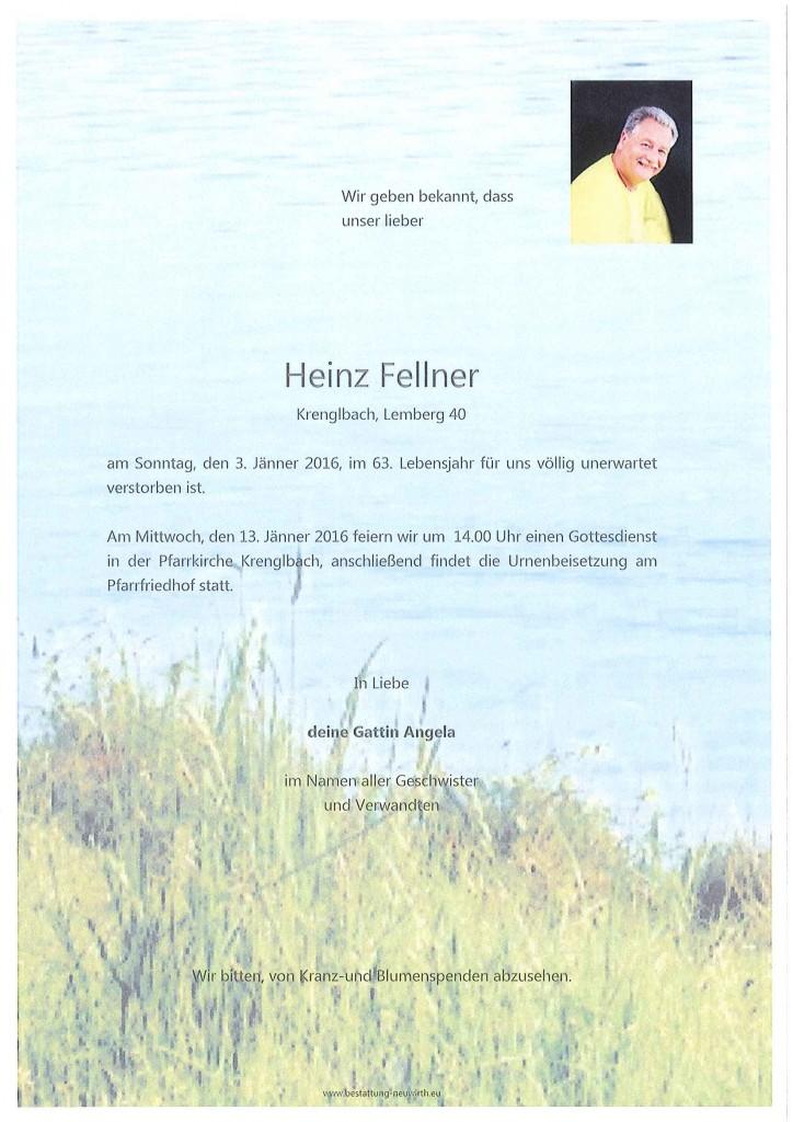Fellner Heinz1