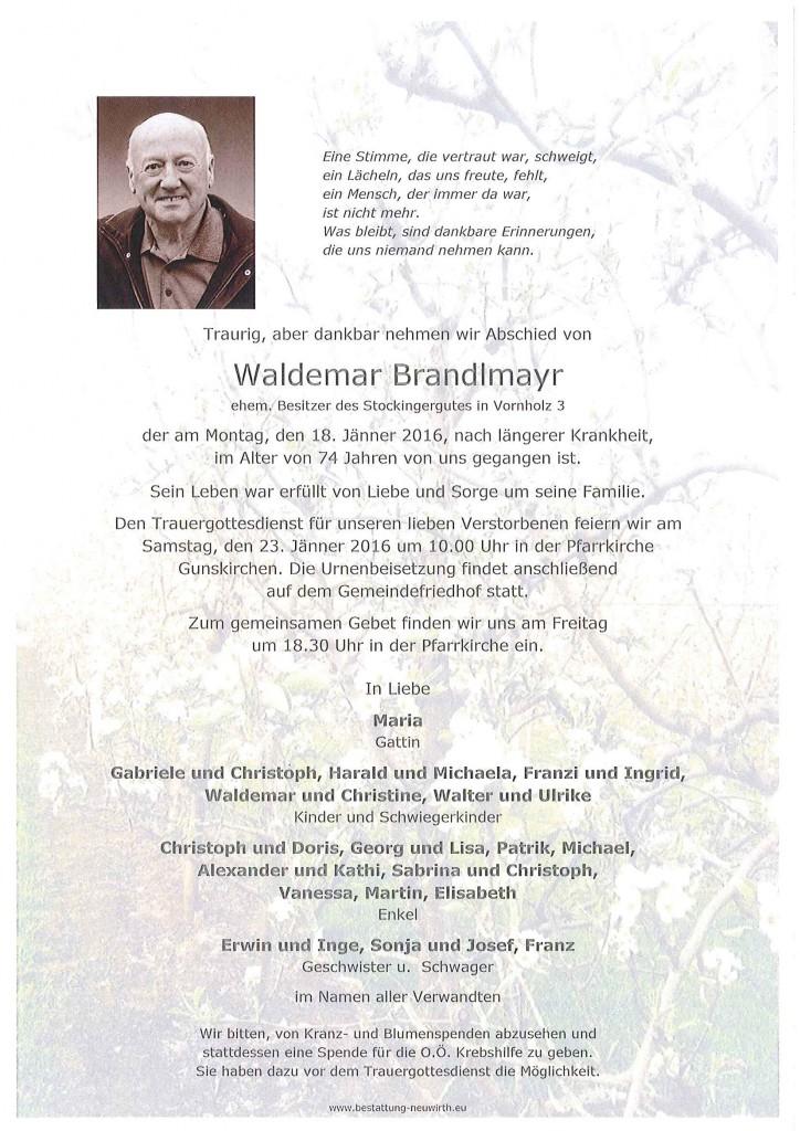 Waldemar Brandlmayr